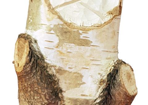 Betulla di Pietra 2 - scultura su betulla 24x10x7 cm