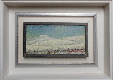 Fariolo - olio su tela 20x10 cm