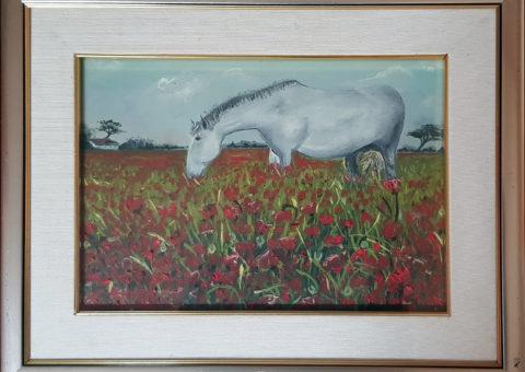 Campo di papaveri - olio su tela 33x24 cm